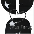 gordelbeschermers zwart witte ster Maxi Cosi